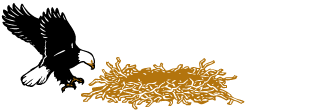 Eagle Nest Lodge Logo