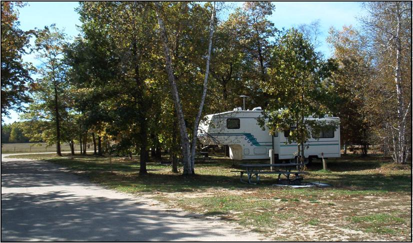 Memorial Forest Park